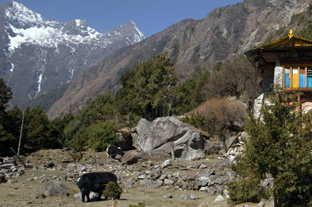 Kanchanjangha Base Camp Trekking